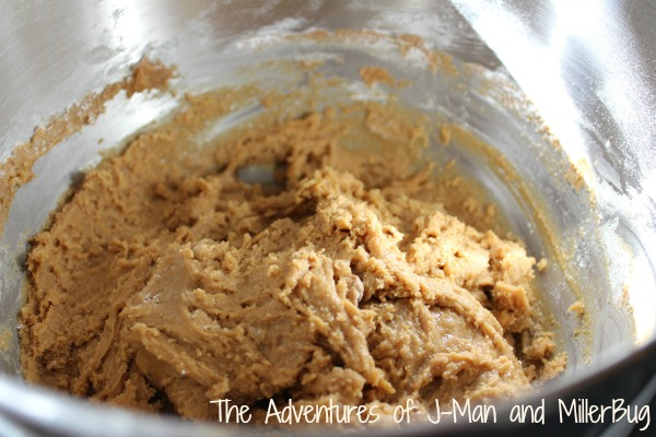 Cookie Butter Delights4