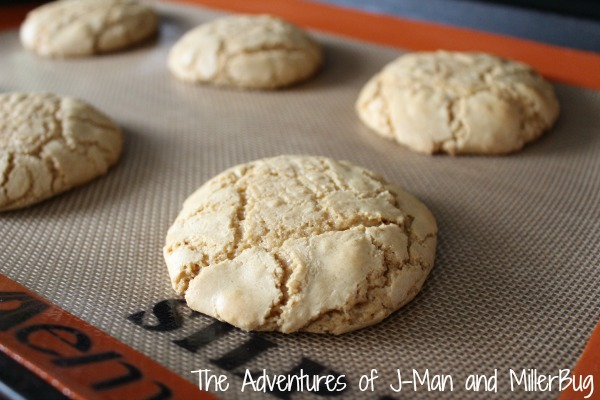 Cookie Butter Delights7